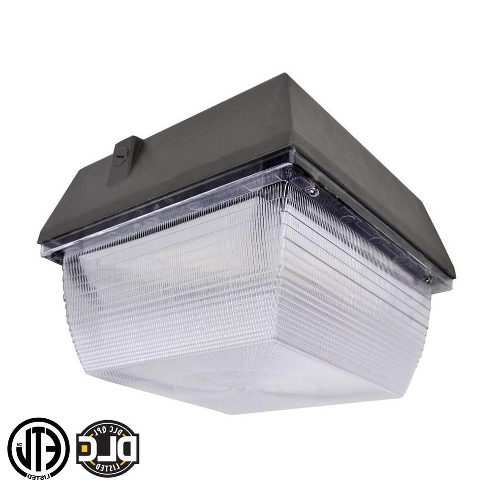 2018 Plastic Outdoor Wall Light Fixtures In Lighting : Axis Led Lighting Outdoor Security Plastic Wall Light (Gallery 16 of 20)