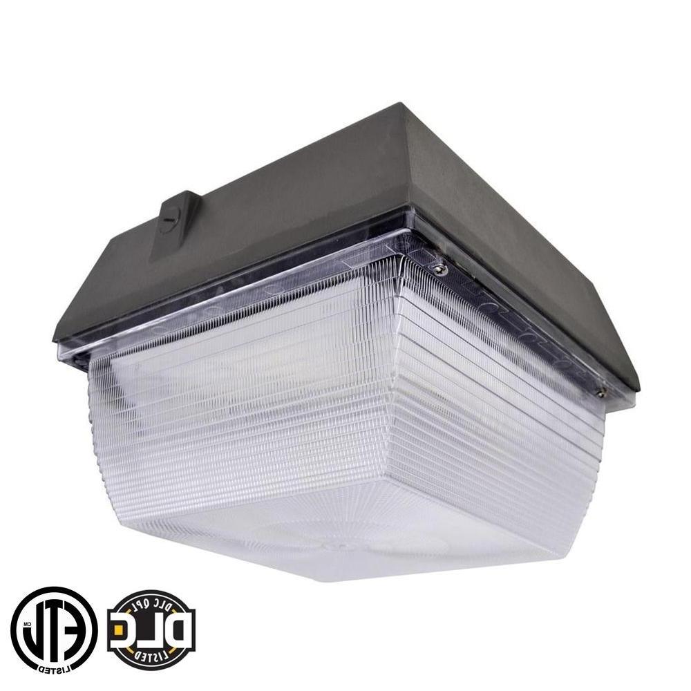 2018 Plastic Outdoor Wall Light Fixtures In Lighting : Axis Led Lighting Outdoor Security Plastic Wall Light (View 16 of 20)