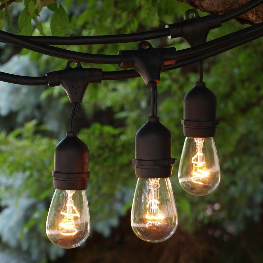 48 Ft Black Commercial Medium Suspended Socket String Light & 11S14 Throughout Most Popular Outdoor Hanging String Lanterns (Gallery 17 of 20)