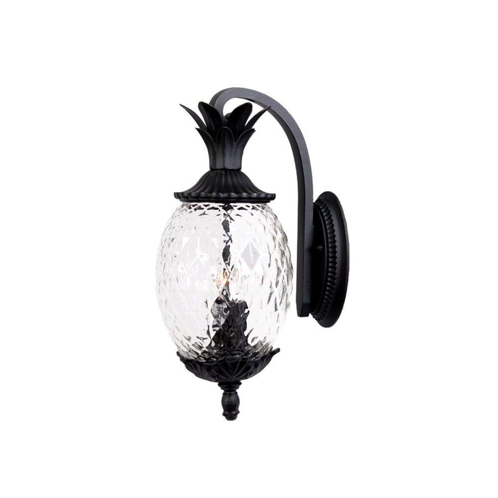 Acclaim Lighting Lanai Collection 2 Light Matte Black Outdoor Wall For Well Liked Pineapple Outdoor Wall Lights (Gallery 7 of 20)