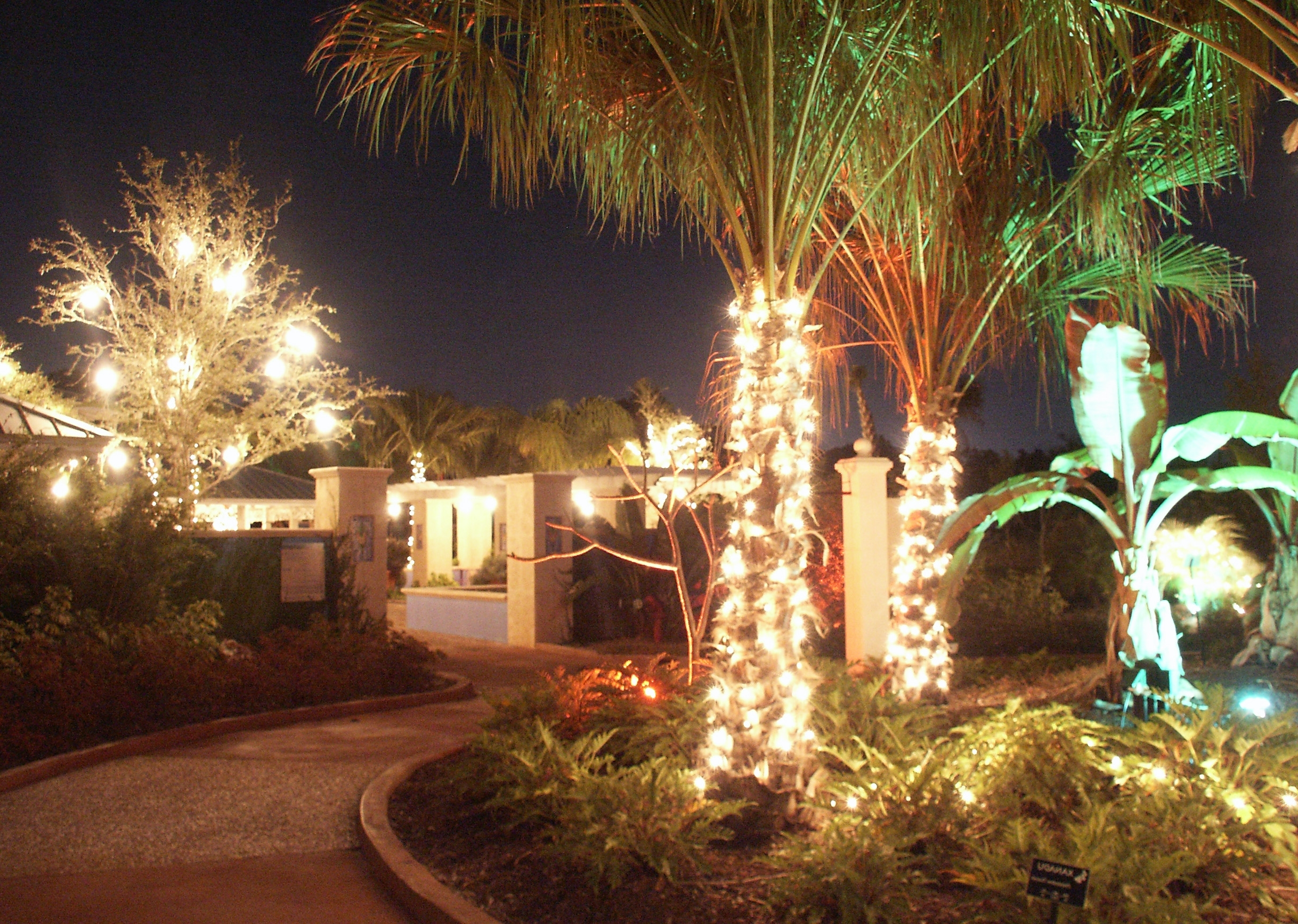 Amazing Hanging String Lights Outdoors At Outdoor Patio Lighting In Latest Hanging Lights On An Outdoor Tree (View 3 of 20)