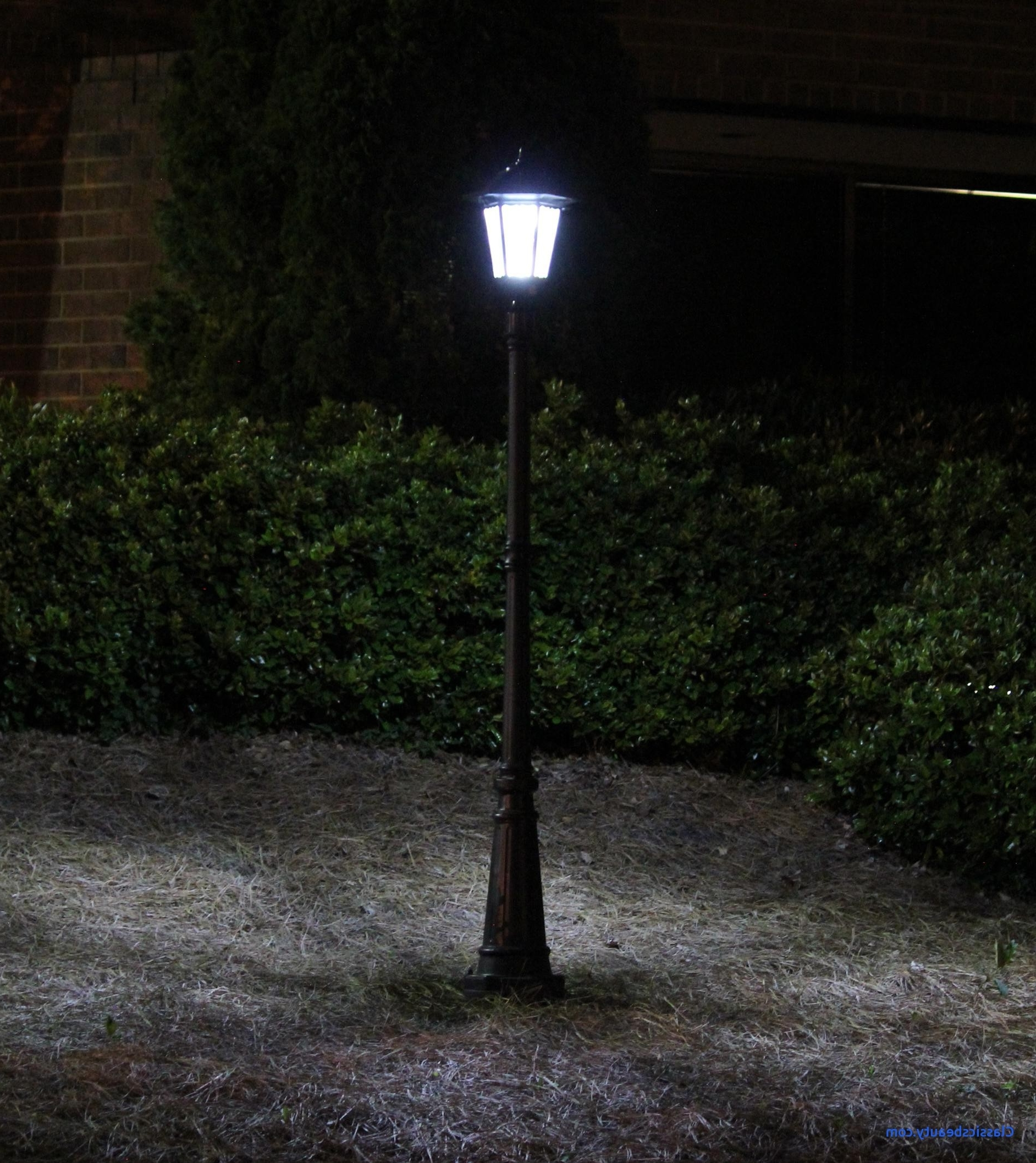 Backyard Solar Lights Beautiful Love Algreen Pond Kit With Solar For 2019 Modern Outdoor Solar Lights At Wayfair (View 1 of 20)
