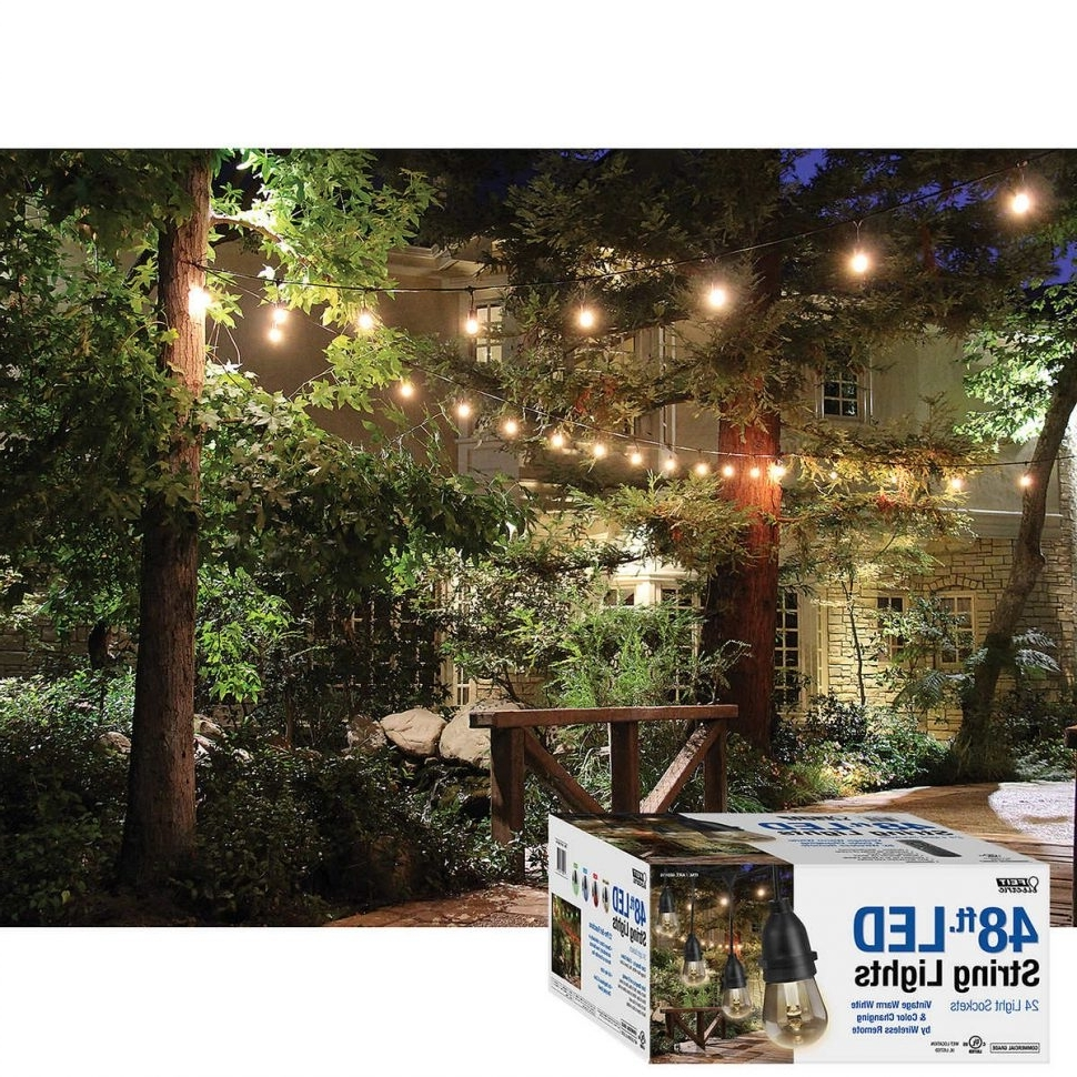 Best And Newest Lighting : Outdoor Lighting Strings Magnificent Commercial String Within Hanging Outdoor String Lights At Costco (Gallery 7 of 20)