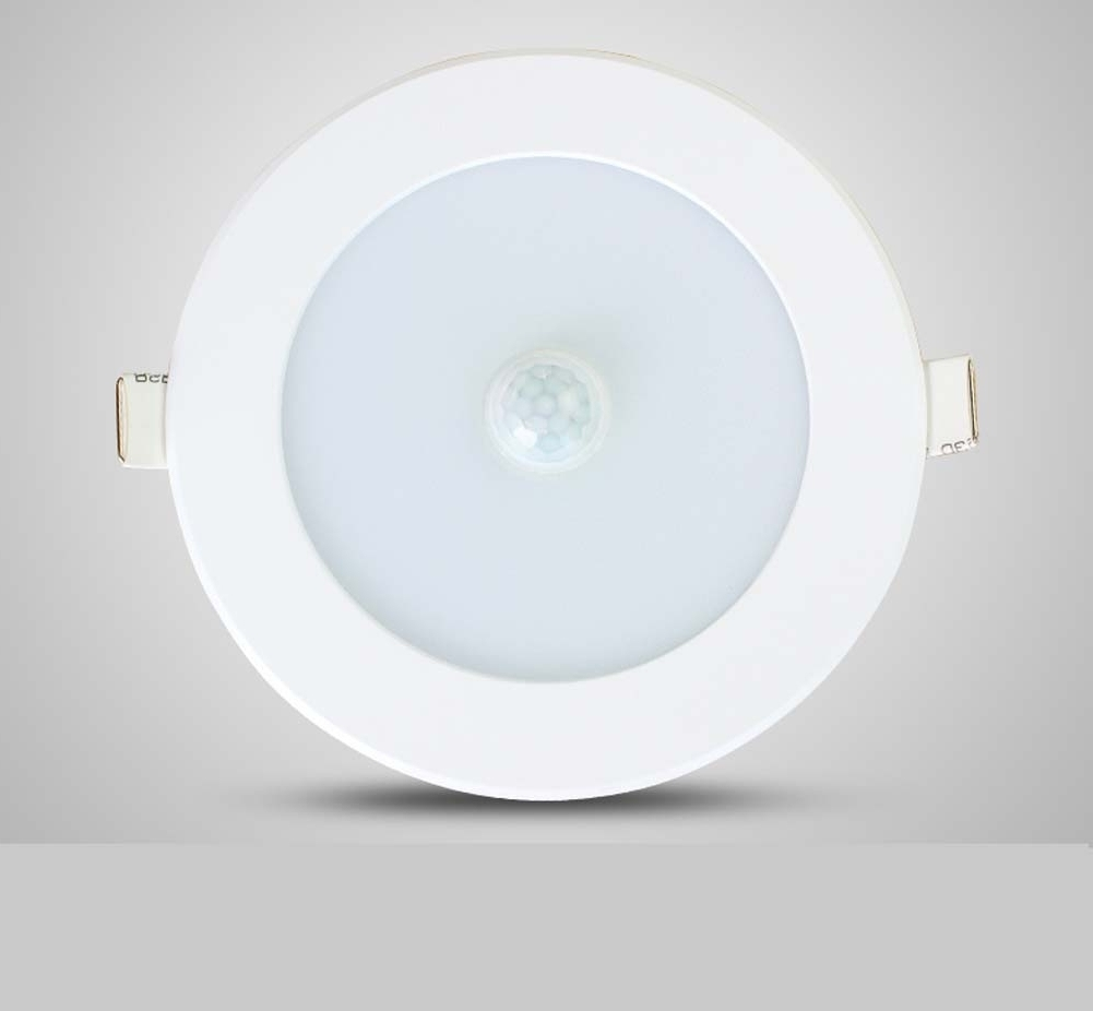 Best And Newest Outdoor Ceiling Pir Lights With Regard To Outdoor Ceiling Pir Light • Ceiling Lights (View 2 of 20)
