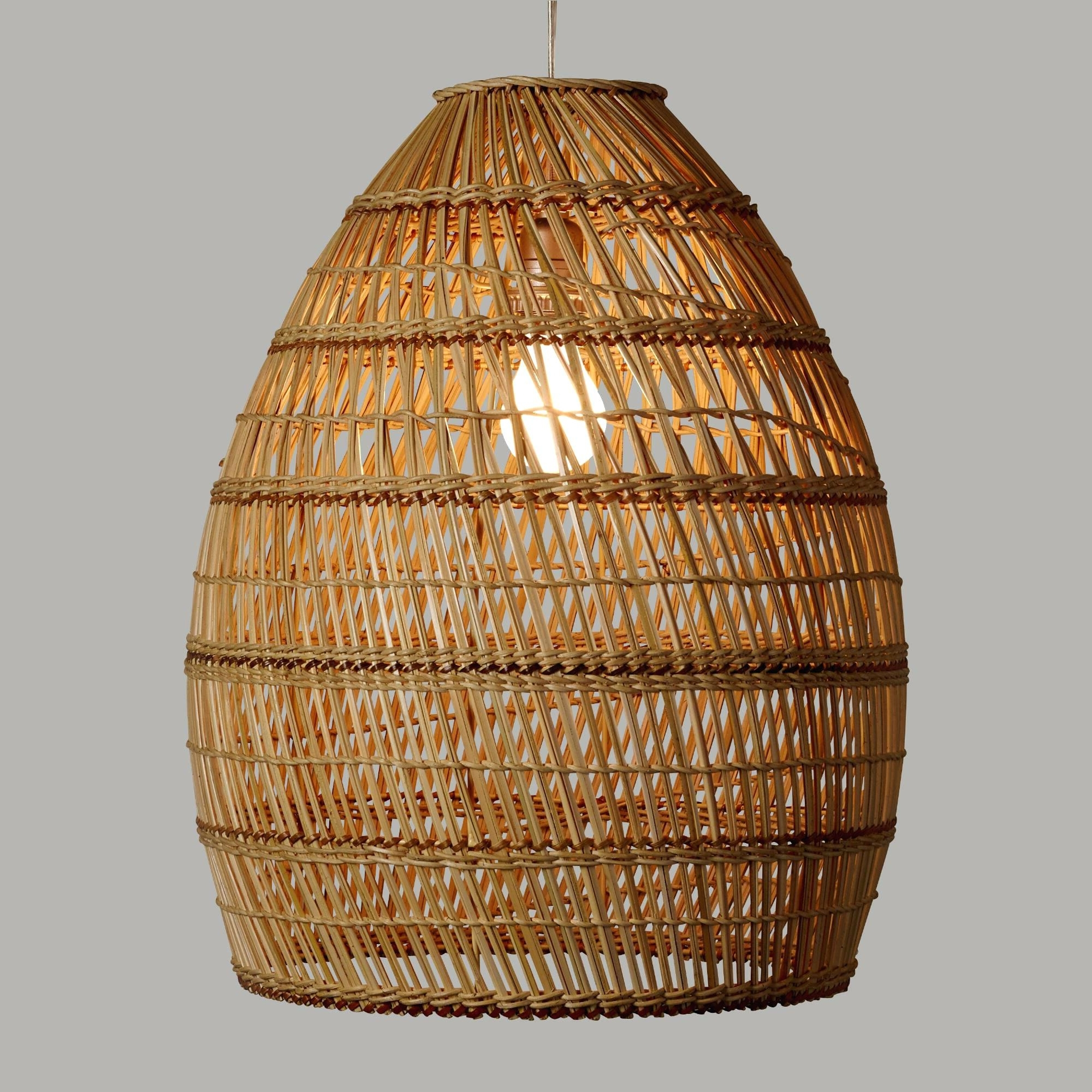 Best And Newest Outdoor Hanging Wicker Lights Within Pendant Light: Wicker Pendant Light (View 3 of 20)