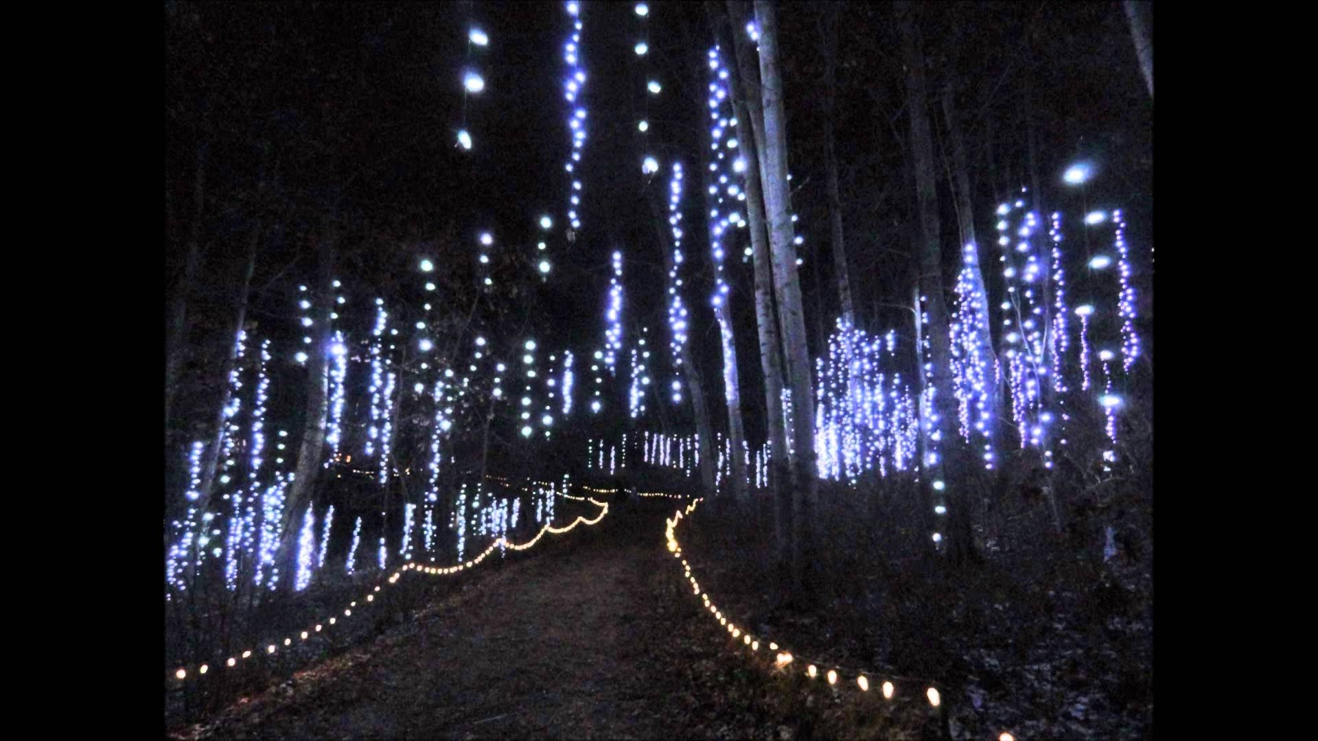 Botanical Garden Lights Pertaining To Trendy Green Bay Botanical Garden Of Lights – Youtube (View 5 of 20)