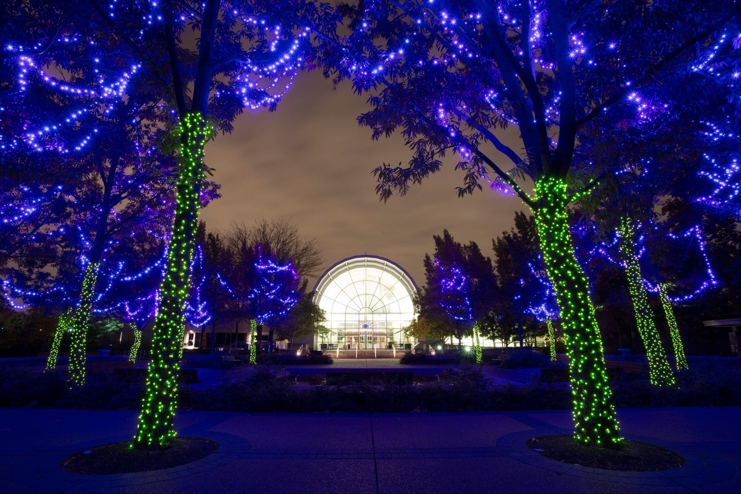Botanical Garden Lights Pertaining To Well Known 5 Things To Do In St (View 14 of 20)
