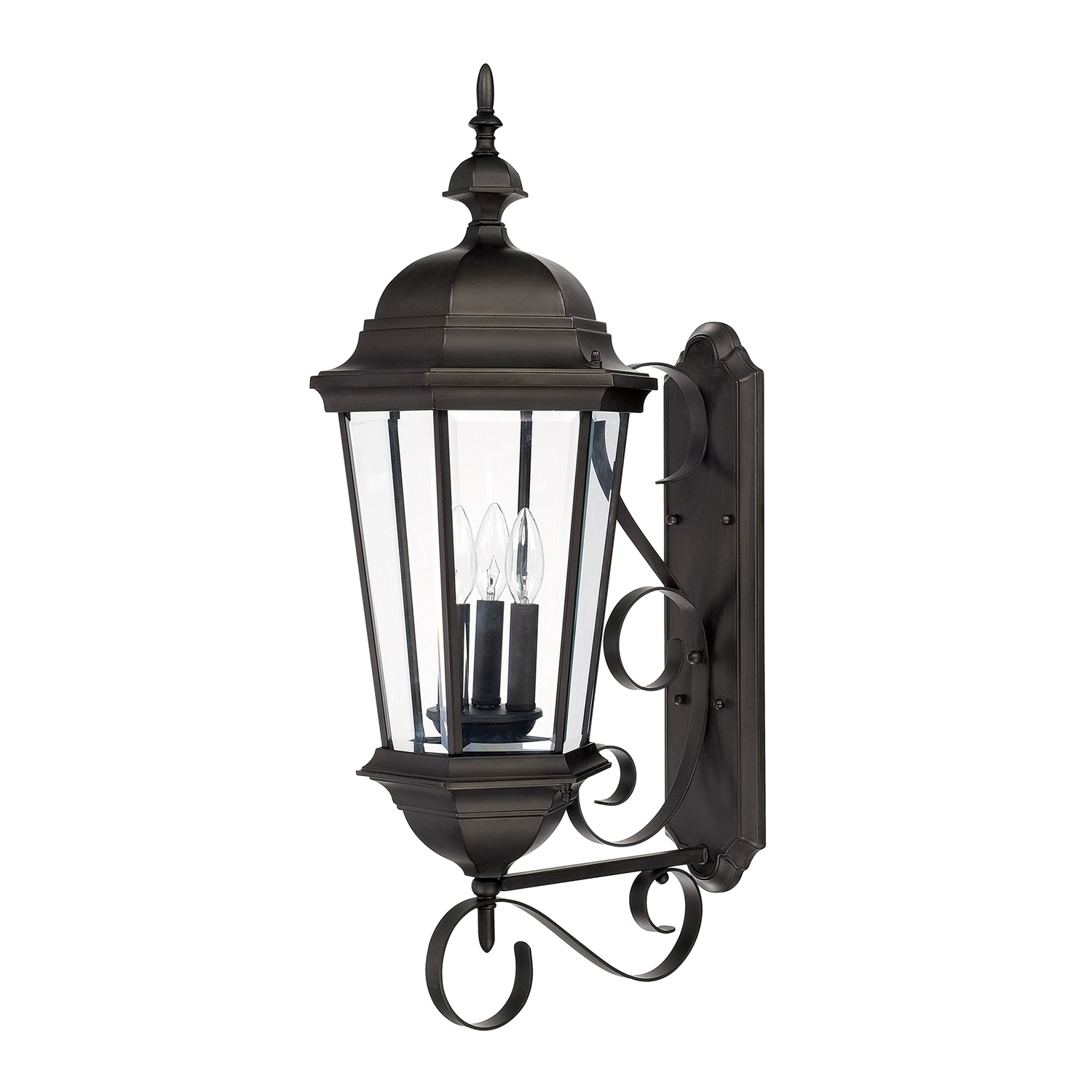 Capital Lighting Fixture Company With Regard To 2018 Outdoor Hanging Carriage Lights (Gallery 6 of 20)