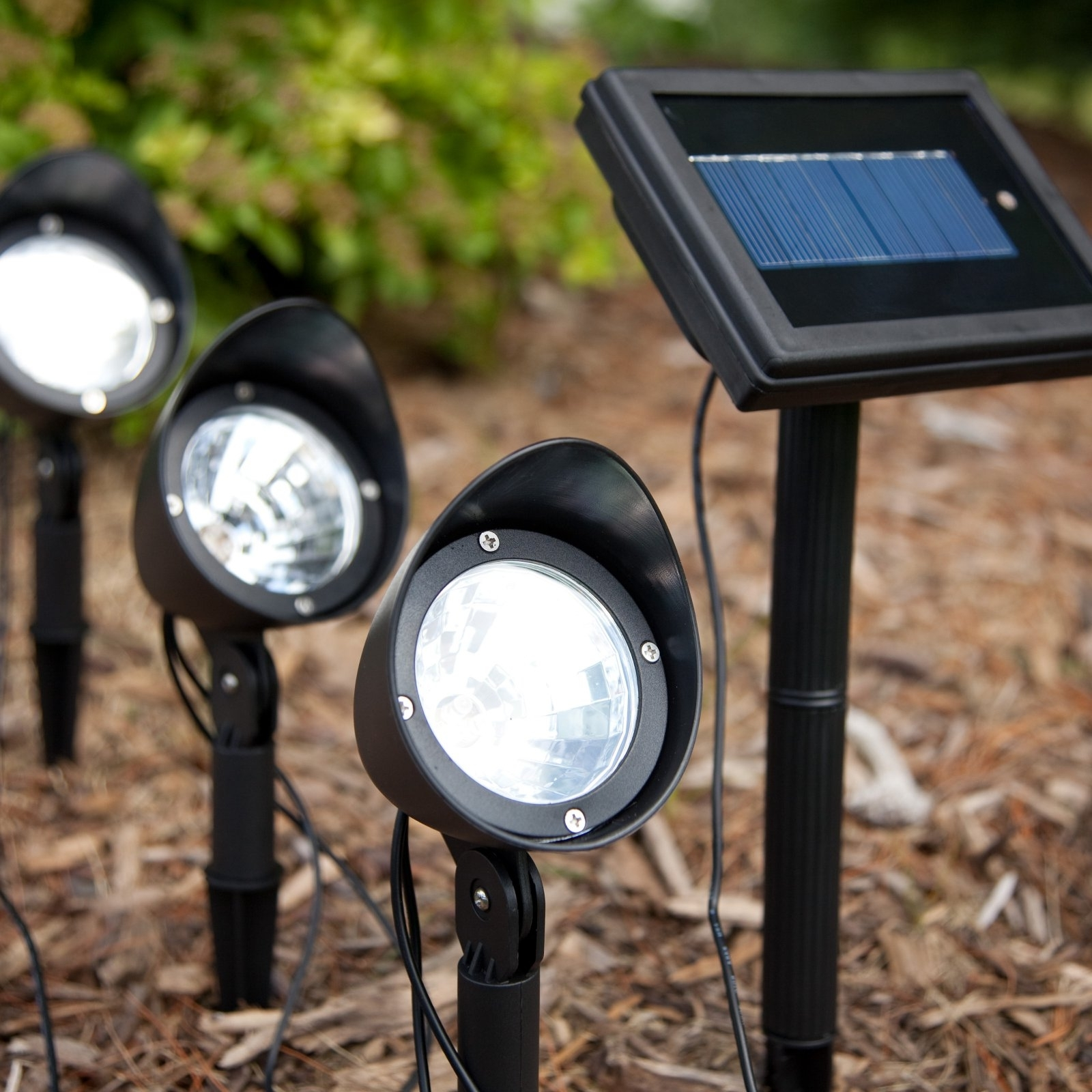 Creative Solar Landscape Lighting Manufacturers For Garden And Regarding Best And Newest Solar Outdoor Lighting (View 5 of 20)