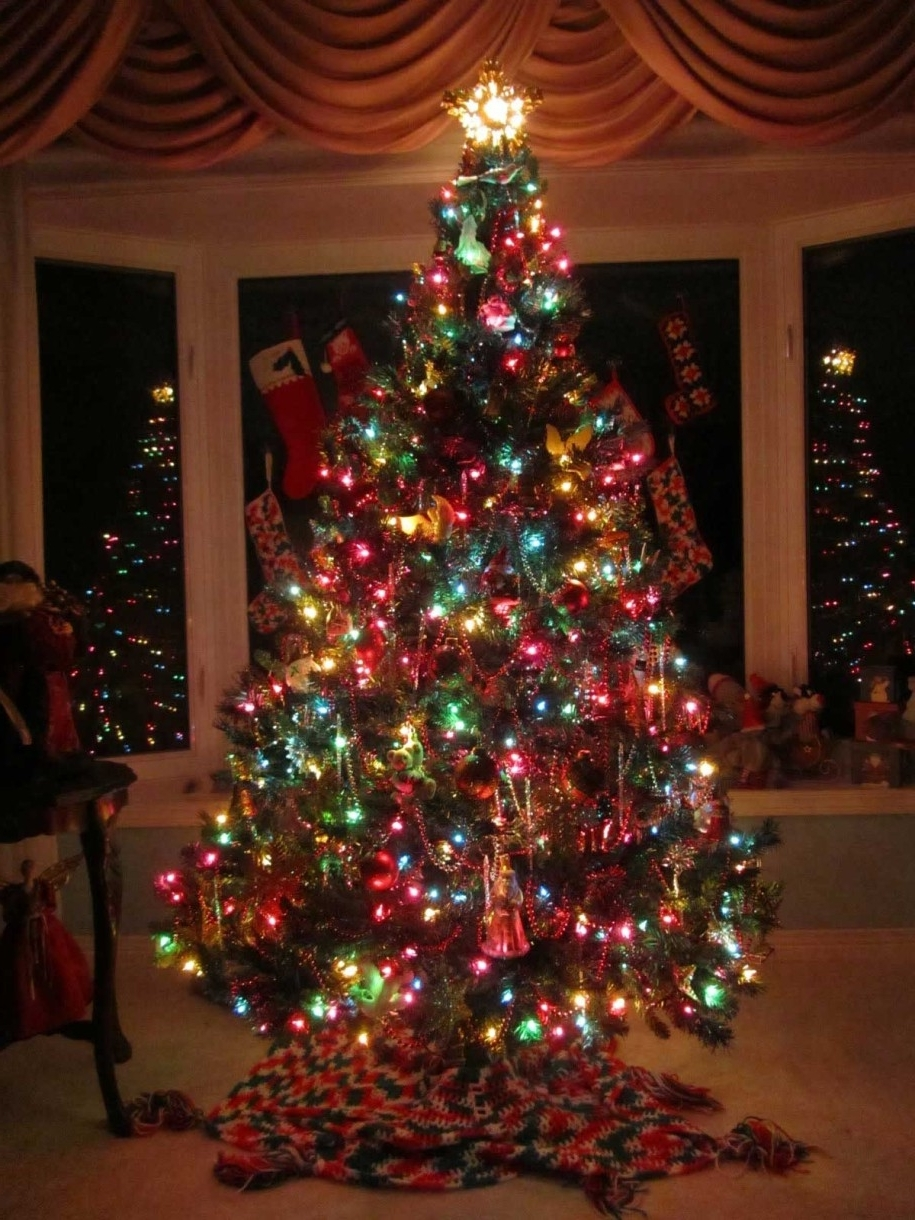 Decoration Ideas Traditional Christmas Tree With Colorful Lights And Intended For Most Popular Hanging Outdoor Christmas Tree Lights (Gallery 12 of 20)