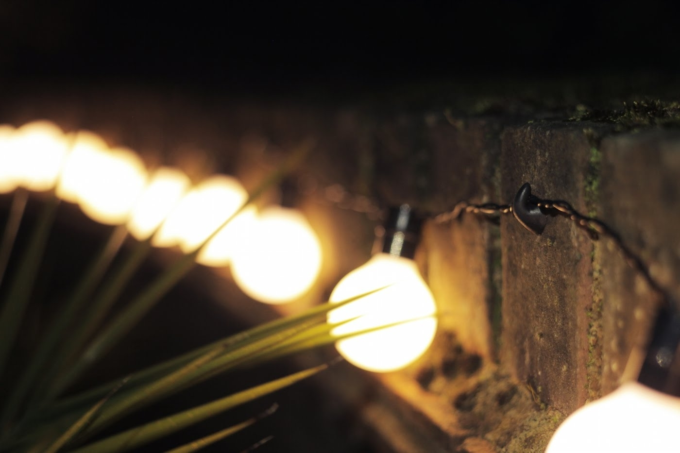 Diy : Easy Way Hang String Lights Outside Hanging Outdoor With Regard To Best And Newest Outdoor Hanging String Lights From Australia (Gallery 20 of 20)