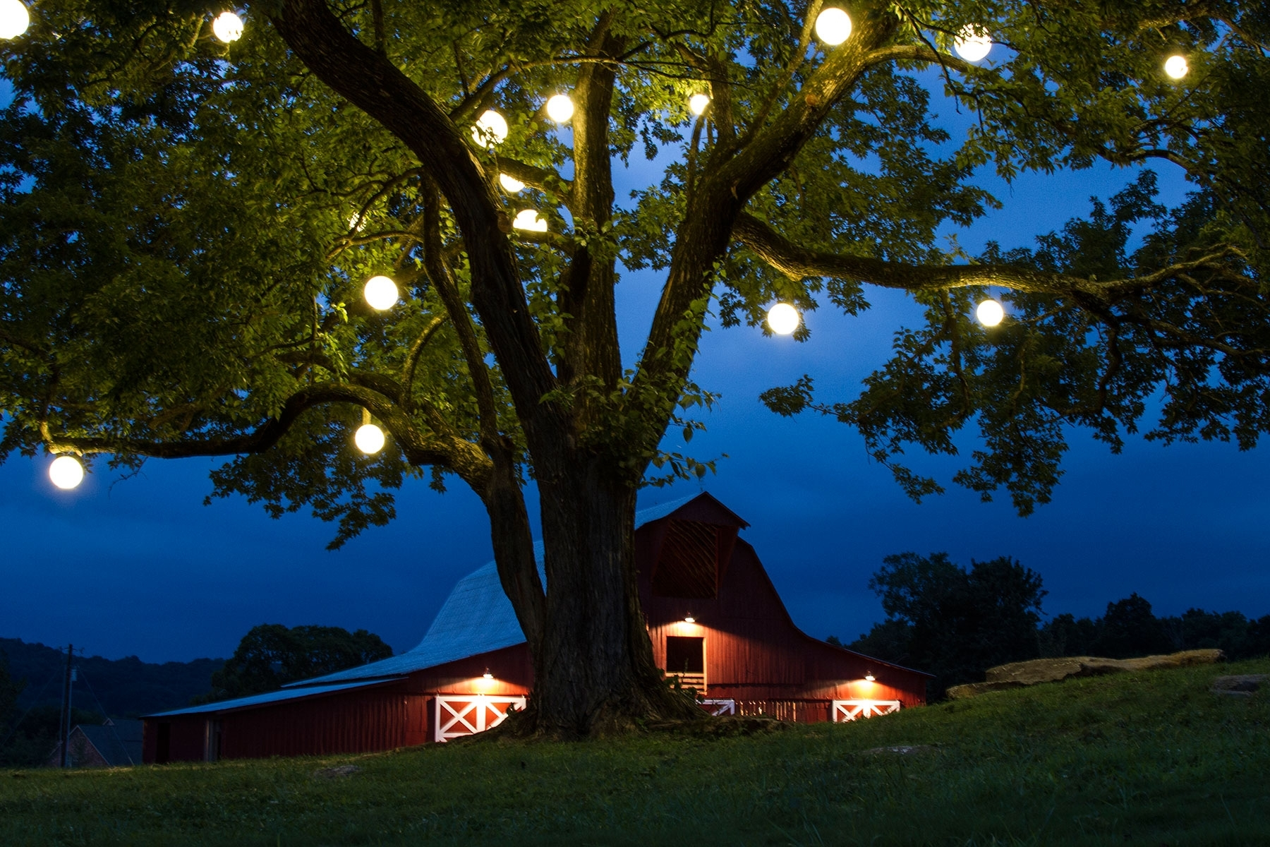 Diy : Outdoor Lights For Trees Home You Also How Use String Pictures For Most Up To Date Hanging Outdoor Lights Without Trees (Gallery 12 of 20)