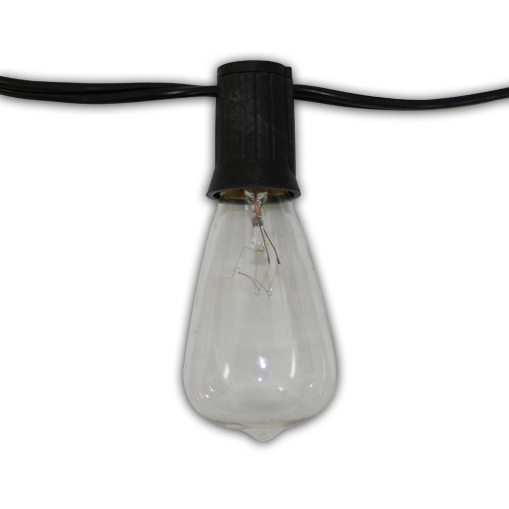 Edison Vintage 24 Light 48 Ft (View 4 of 20)