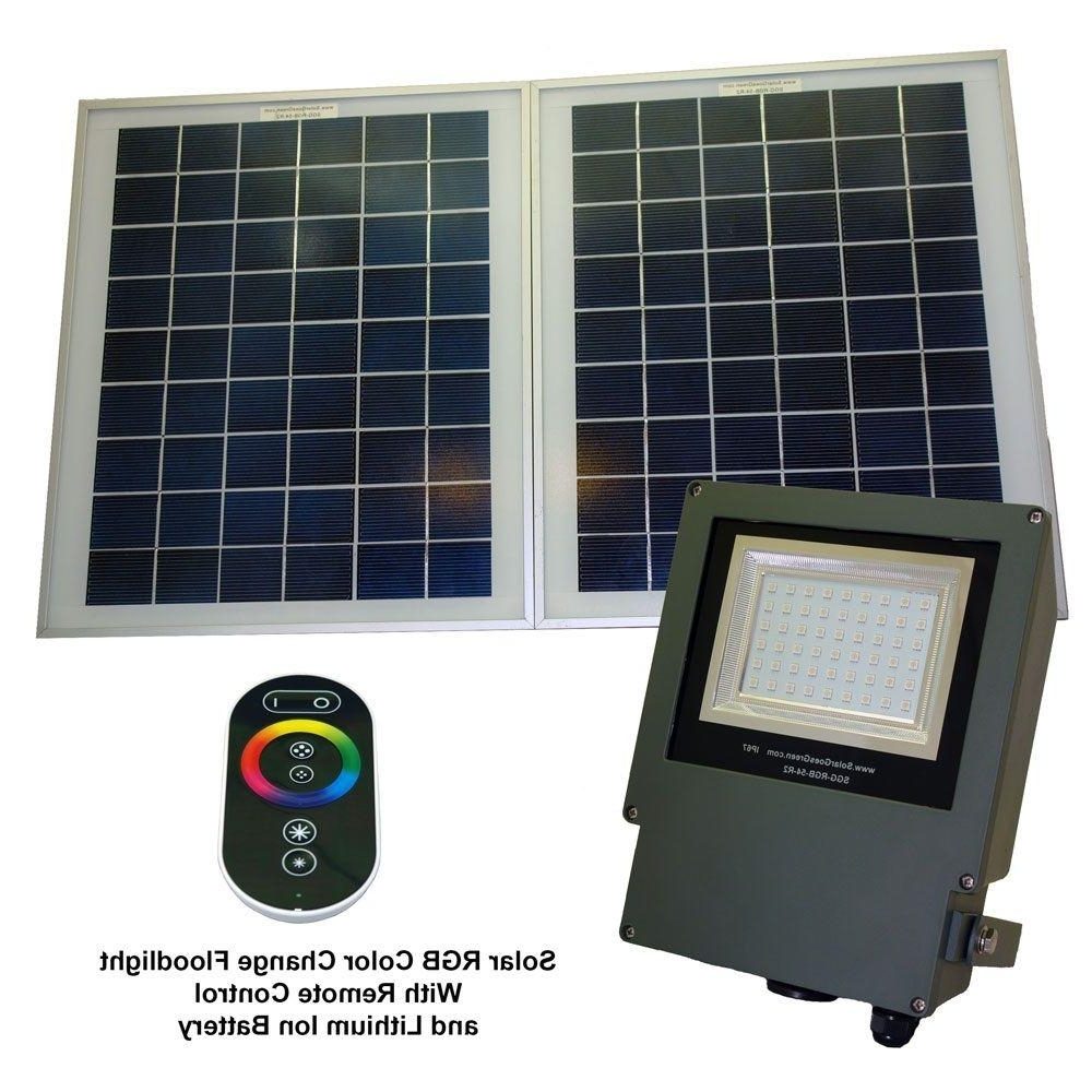 Fashionable Hampton Bay Outdoor Lighting At Wayfair In Solar Goes Green Solar Grey Color Led Changing Outdoor Flood Light (View 9 of 20)