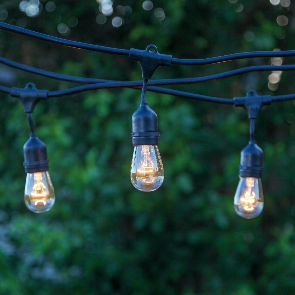 Favorite Outdoor Waterproof Hanging Lights Pertaining To Furniture : Brightech Store Ambience Pro Outdoor Weatherproof (View 7 of 20)
