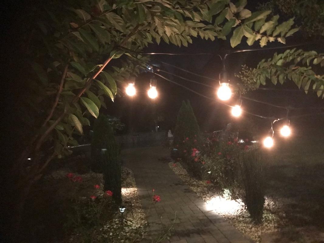 Favorite Royaldesigns Premium Weatherproof Indoor/outdoor 16 Light Globe Regarding Outdoor And Garden String Lights At Wayfair (View 3 of 20)
