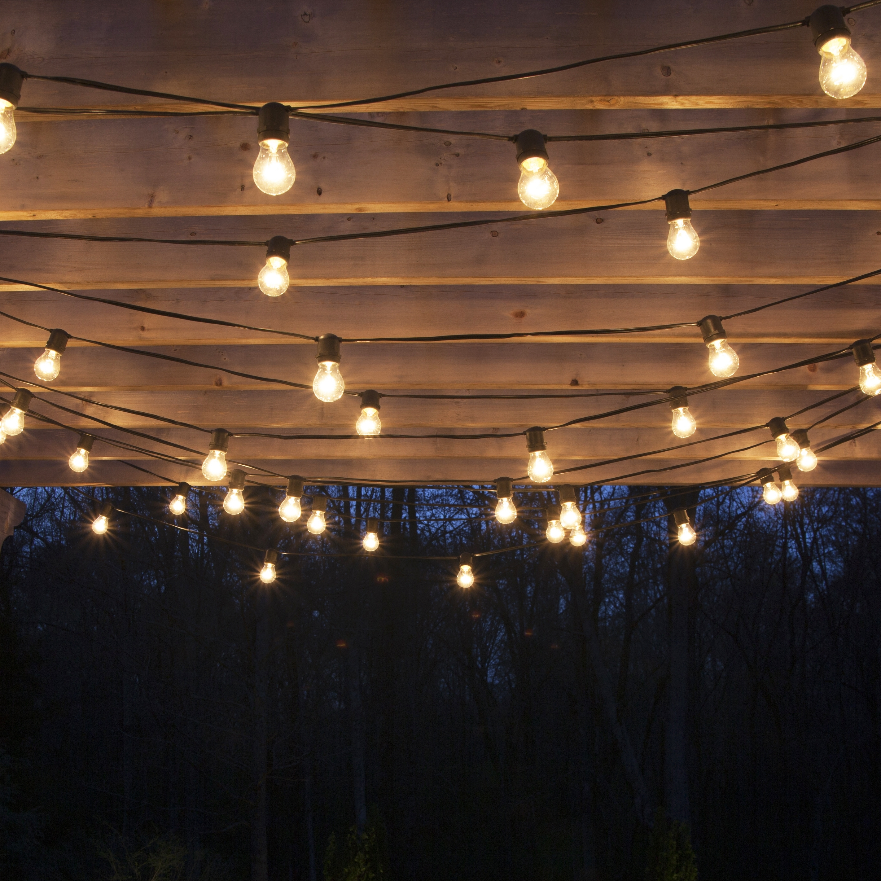 Garden Design With The Best Outdoor String Lights Plus Hanging On With Widely Used Outdoor Hanging Party Lights (View 9 of 20)