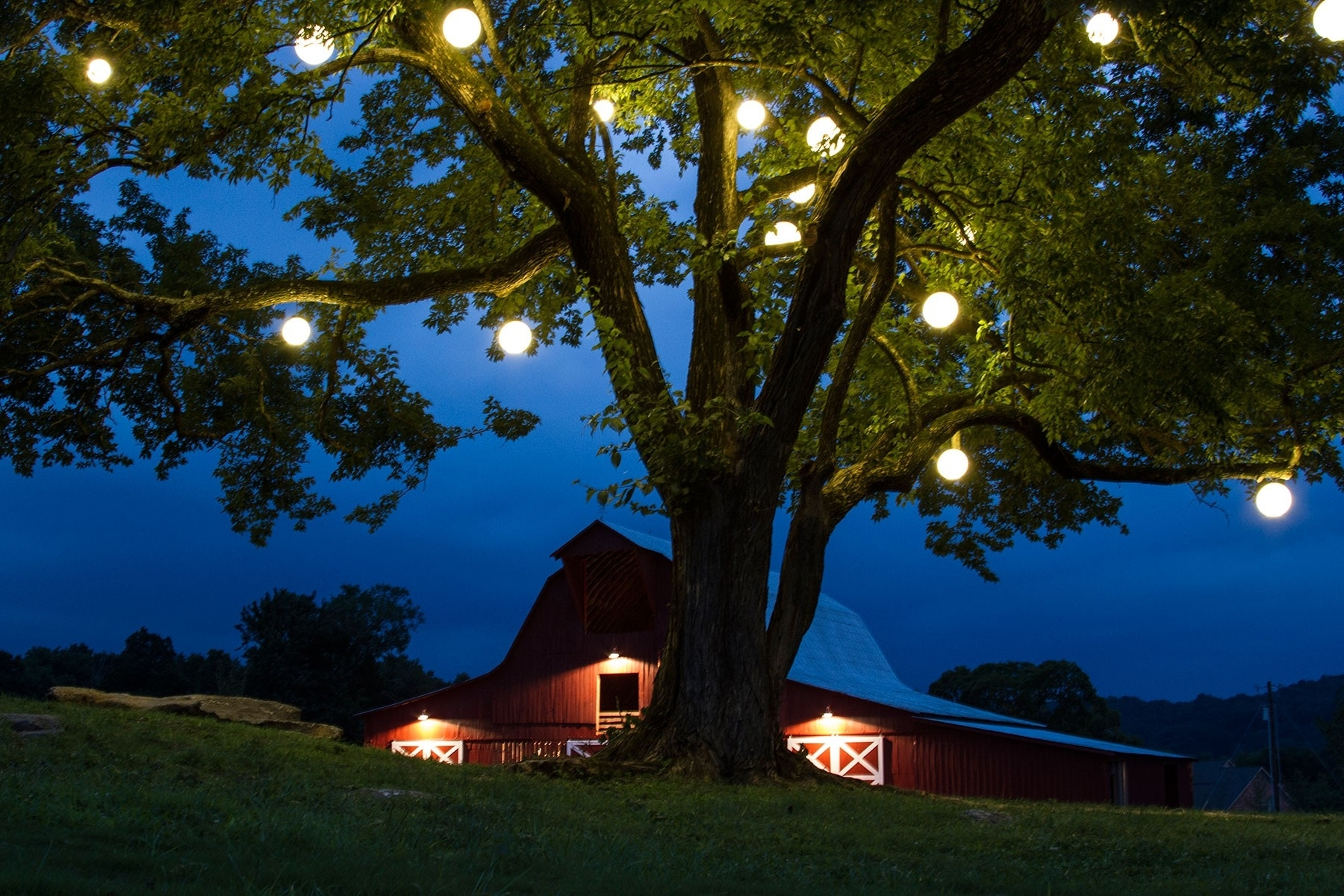 Hanging Lights In Outdoor Trees Within Favorite Outdoor Tree Lights Home Design Ideas And Pictures – Hommum (View 5 of 20)