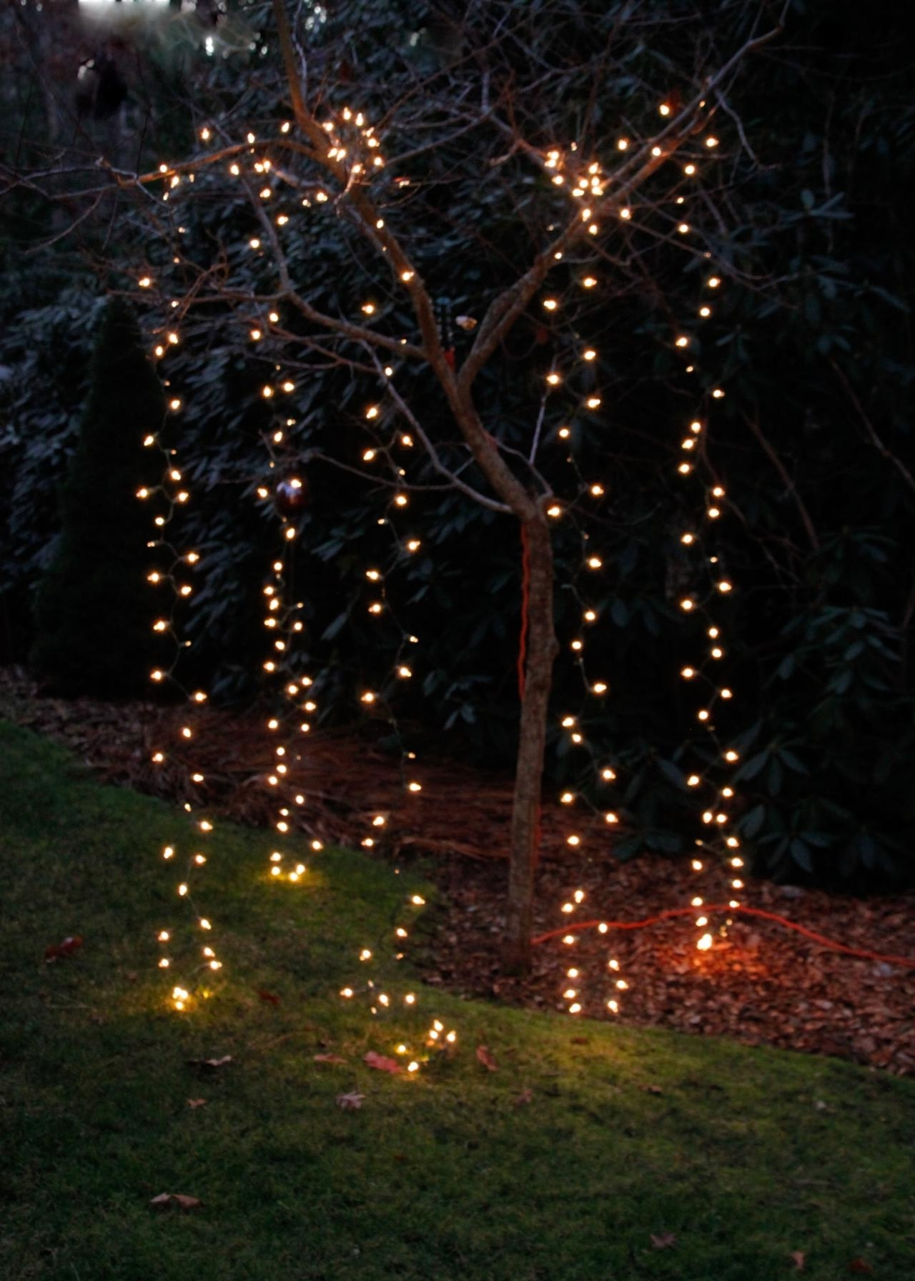 Hanging Outdoor Lights On Trees Inside Most Current 10 Ways To Amp Up Your Outdoor Space With String Lights (View 9 of 20)