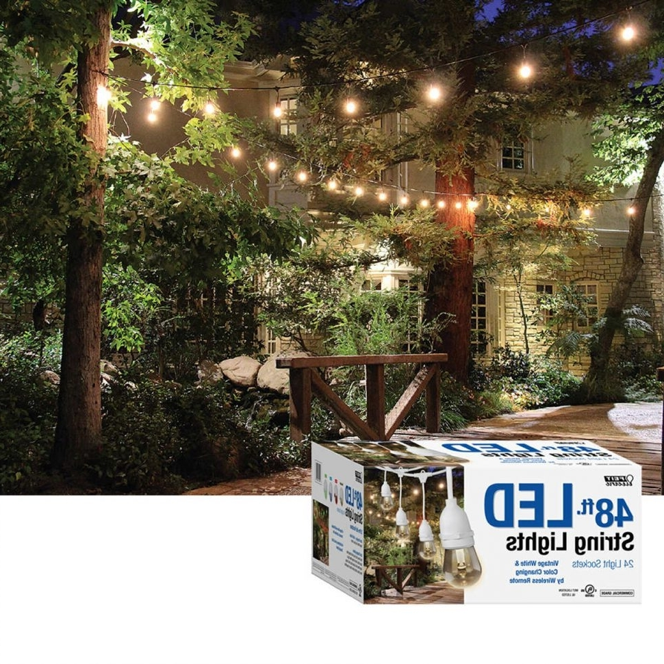 Hanging Outdoor String Lights At Costco Regarding Recent Diy : Feit Led Indooroutdoor Waterproof Colour Changing Outdoor (View 8 of 20)