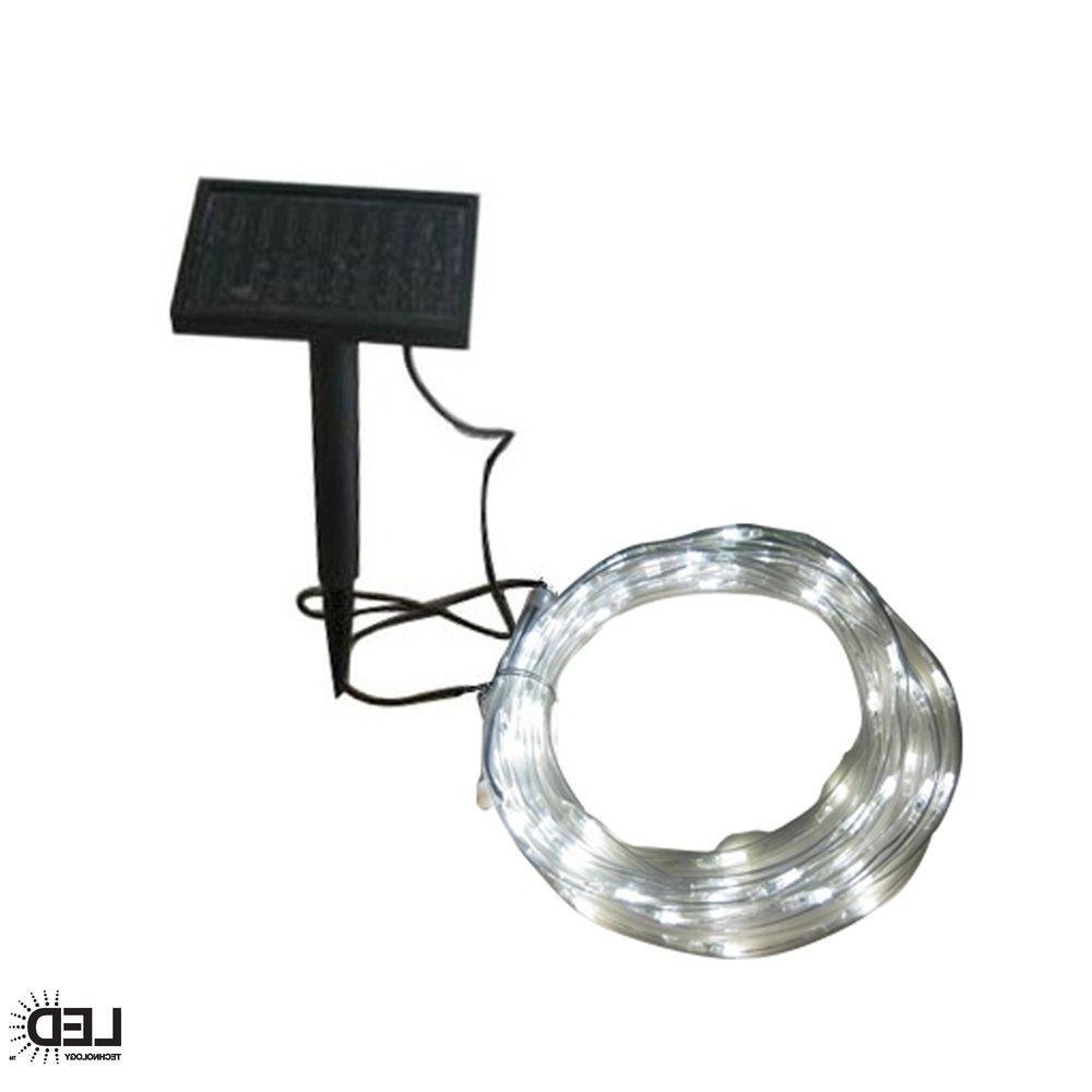 Modern Solar Garden Lighting At Home Depot Regarding Most Up To Date Hampton Bay 16 Ft (View 1 of 20)