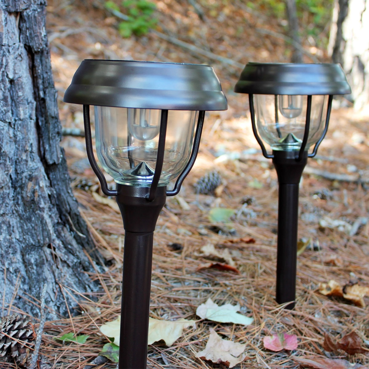 Most Current Modern Solar Garden Lights At Wayfair Intended For Gama Sonic (View 9 of 20)