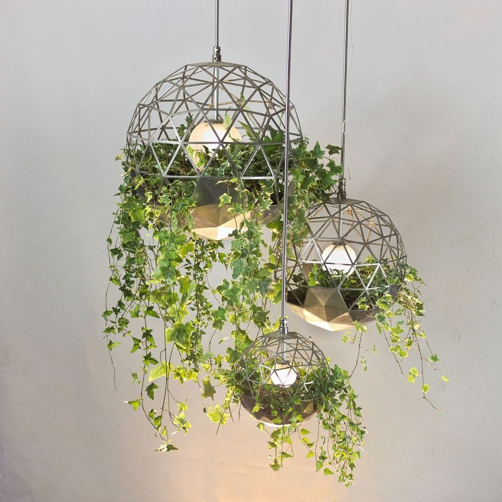 Most Current Outdoor Hanging Basket Lights With Atelier Schroeter Geodesic Terrarium (View 10 of 20)