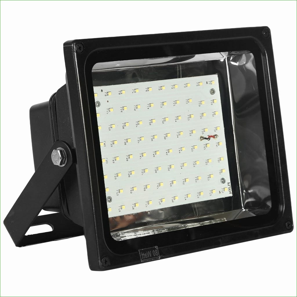 Most Popular Lithonia Lighting Wall Mount Outdoor Bronze Led Floodlight With Motion Sensor Pertaining To Lithonia Lighting Led Flood Light Luxury Lithonia Lighting Wall (View 15 of 20)