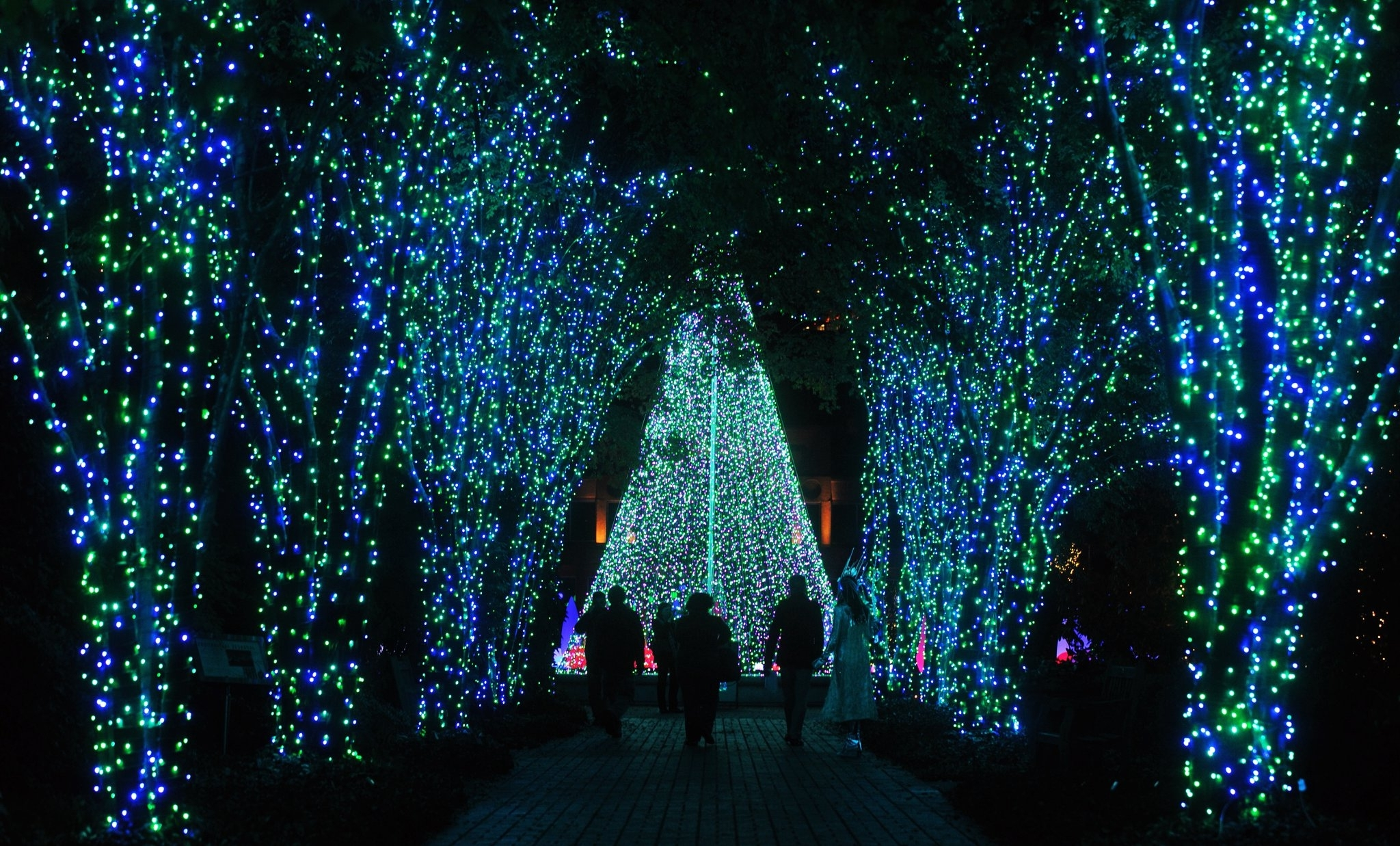 Most Recent Botanical Garden Lights Inside The Atlanta Botanical Garden, Garden Light Up The Garden Holiday (View 15 of 20)