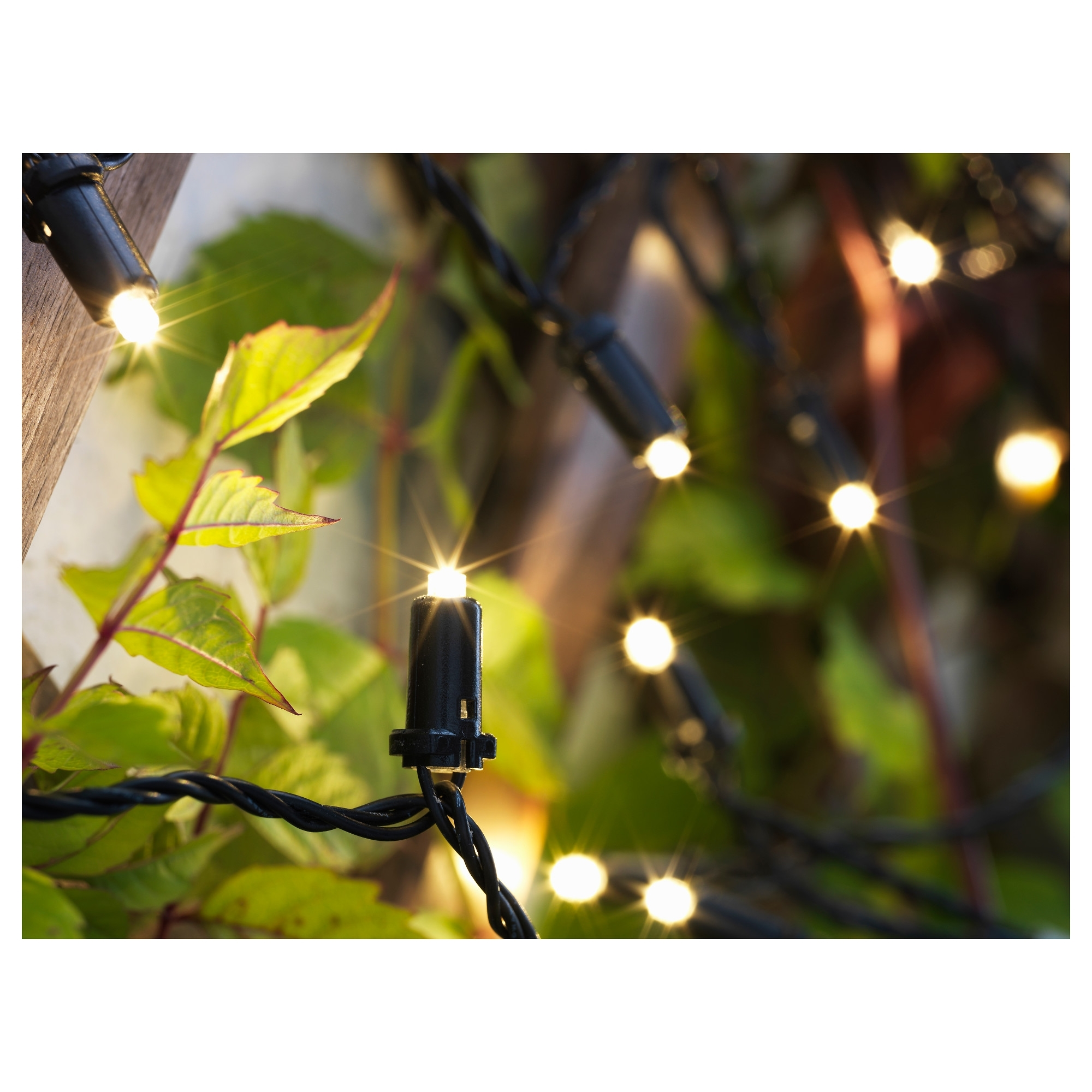 Most Recent Ikea Battery Operated Outdoor Lights Within Solarvet Led String Light With 24