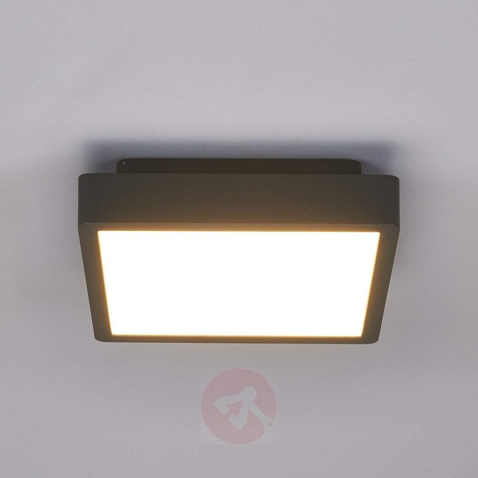 Outdoor Ceiling Led Lights With Regard To Trendy Outdoor : Outdoor Wall Sconce Lighting Fixtures Semi Flush Light (View 14 of 20)