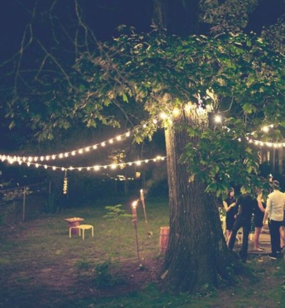 Outdoor Hanging Lights For Stylish Garden Ideas With Big Tree (View 4 of 20)