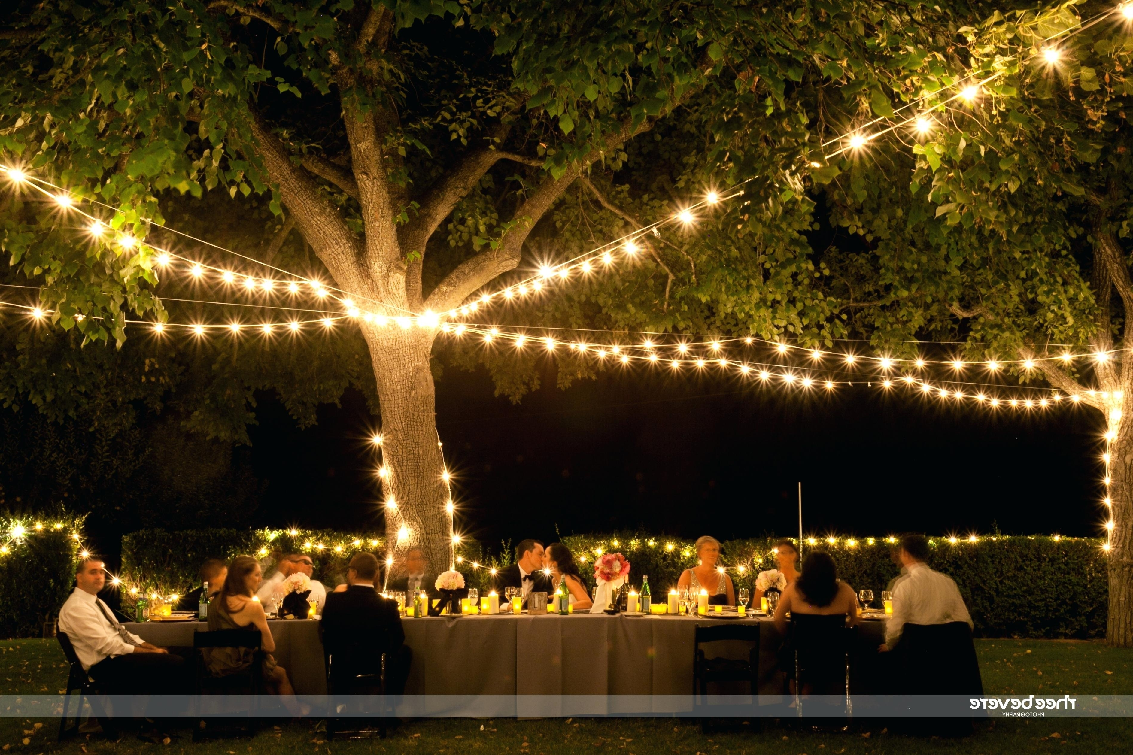 Outdoor Hanging String Lights From Australia With Most Recently Released Lighting : Outdoor String Lights Walmart Canada Best Patio Vintage (View 11 of 20)