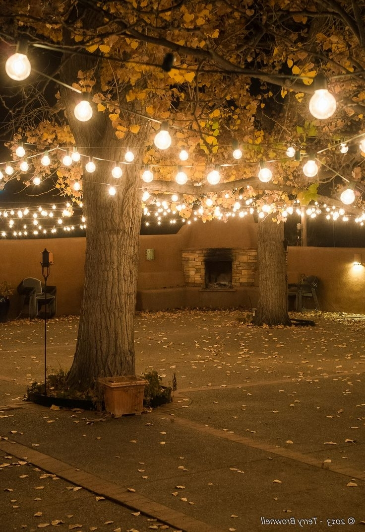 Preferred 103 Best Patio Lights Images On Pinterest (View 15 of 20)