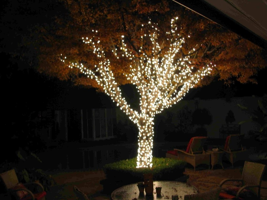 Prissy Design Hanging Christmas Lights Outside Tree On Trees Intended For Most Current Hanging Lights In Outdoor Trees (View 17 of 20)
