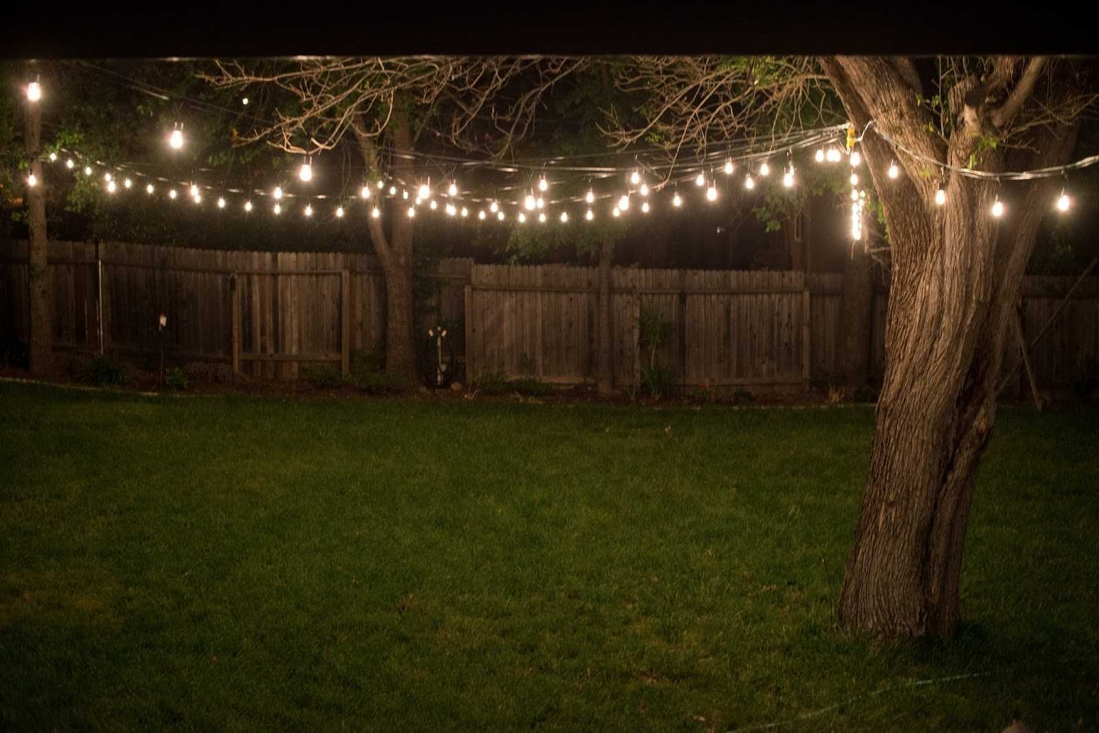 Shocking Backyard String Lights Gather For Patio Ideas Styles And With Well Known Outdoor String And Patio Lights (View 6 of 20)