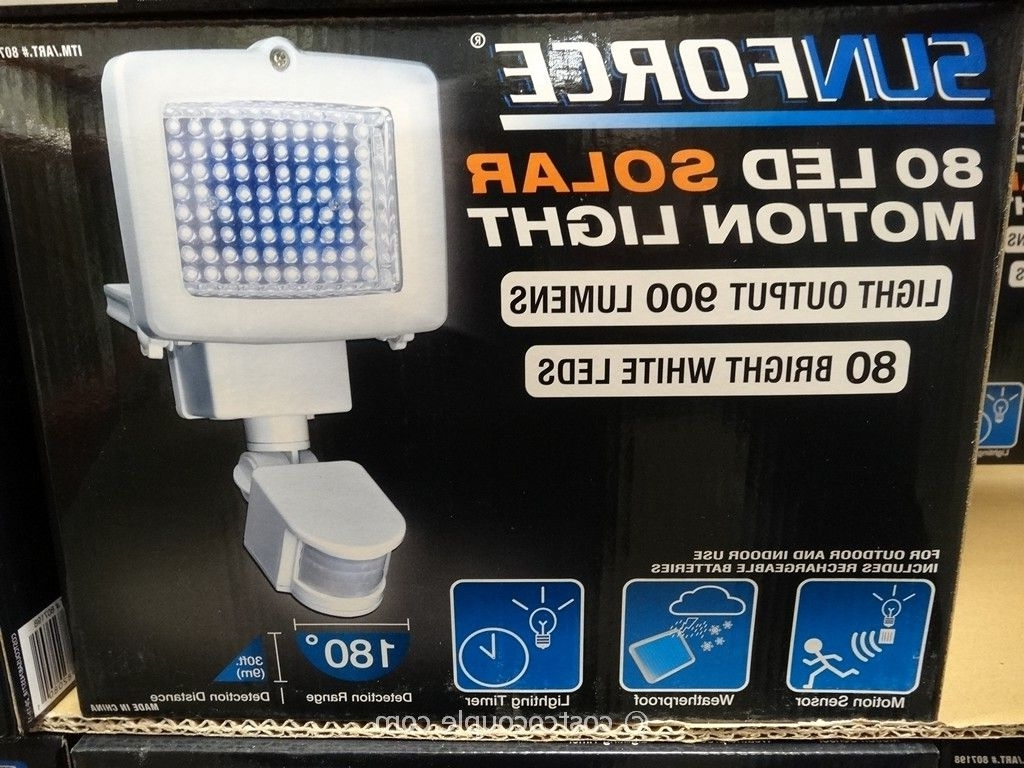 Solar Garden Lights At Costco Inside Newest Solar (View 15 of 20)