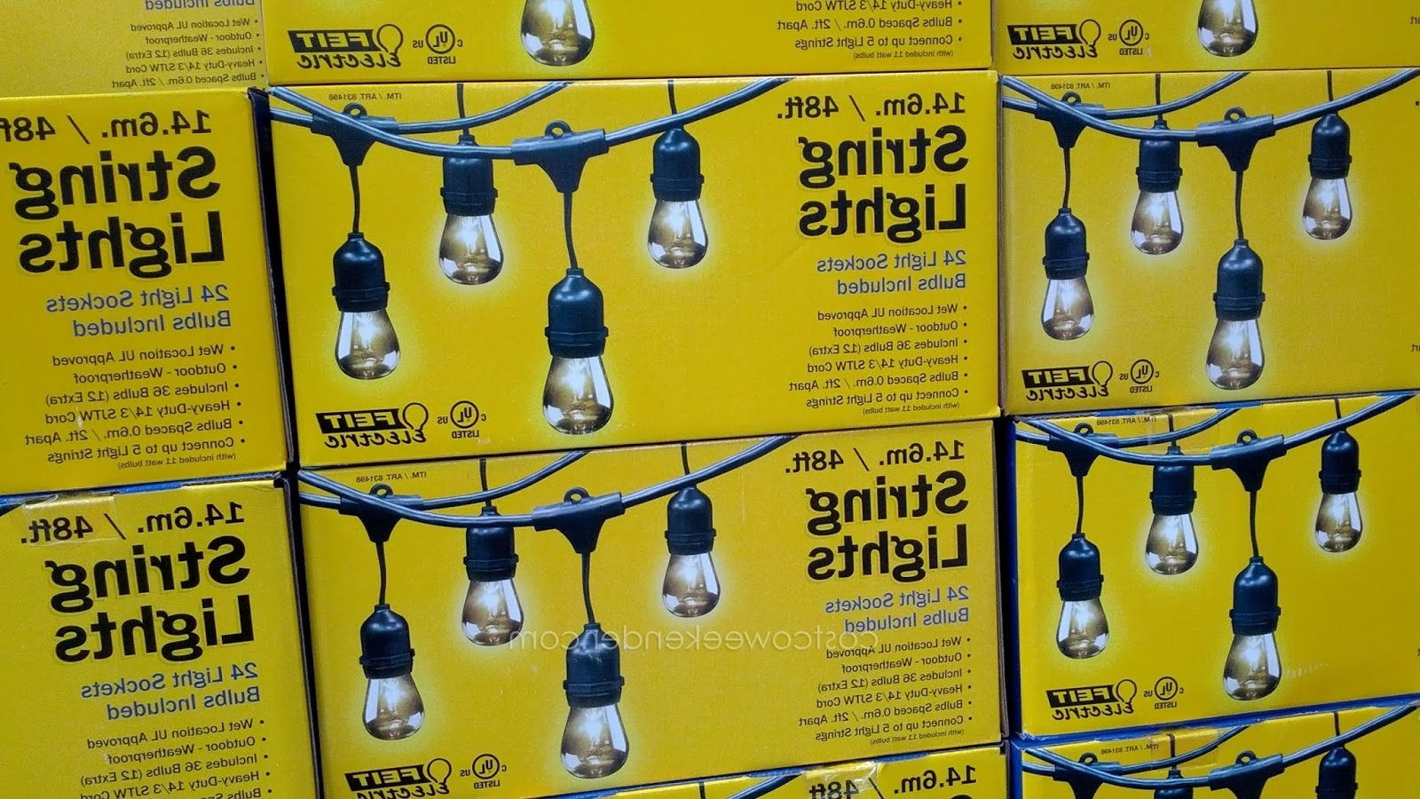 Solar Garden Lights At Costco Pertaining To Recent Gardenscaping: Putting Up The Costco Patio Lights (View 17 of 20)
