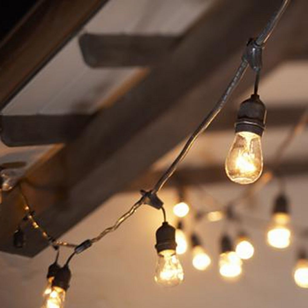 String Lights – 48 Feet Long – Bulbs Included (View 10 of 20)