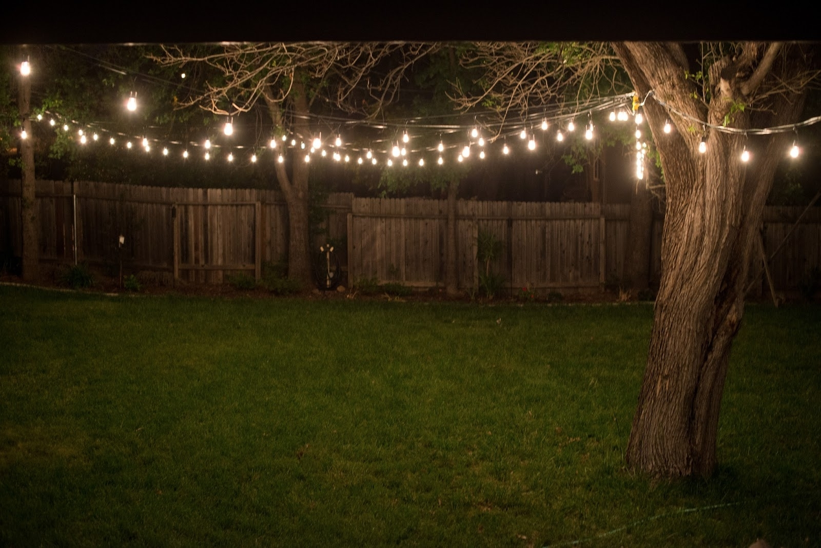 Well Known Outdoor Hanging Garden Lights Pertaining To Inspirations: Outdoor Lighting Strings Ideas Also String Lights (View 16 of 20)