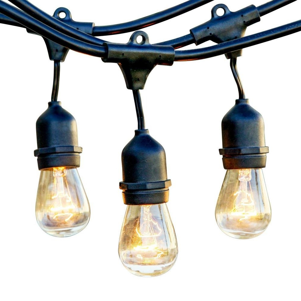 Well Known Outdoor Hanging String Light Bulbs Regarding Newhouse Lighting 25 Ft (View 19 of 20)