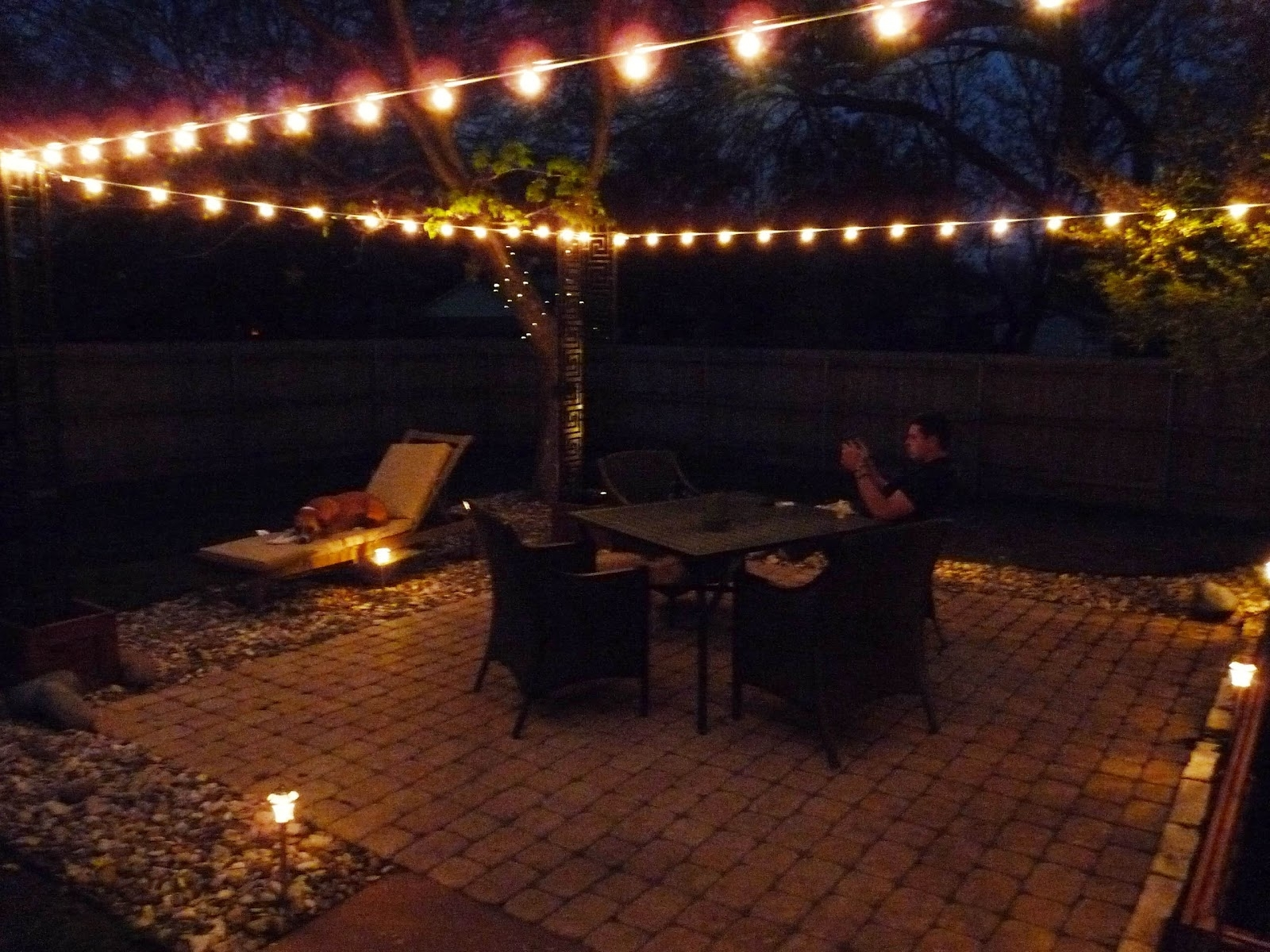 Well Known The Happy Homebodies: Diy: Stringing Patio Cafe Lights With Regard To Hanging Outdoor Rope Lights (View 19 of 20)