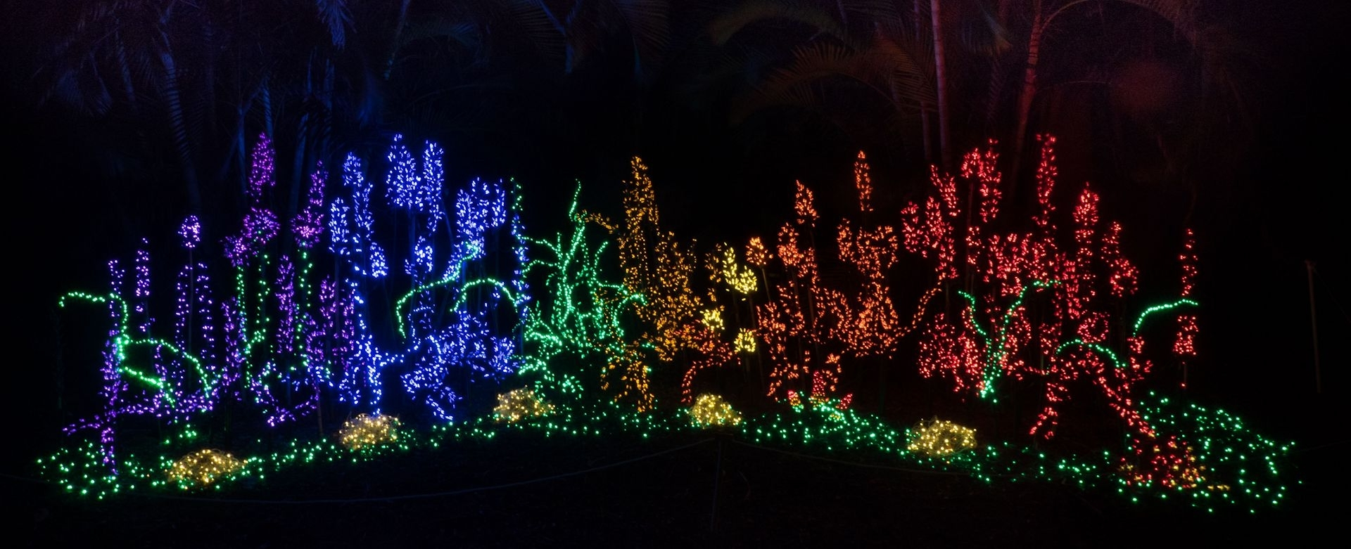 Widely Used Botanical Garden Lights For Garden Of Lights – Heathcote Botanical Gardens (View 16 of 20)