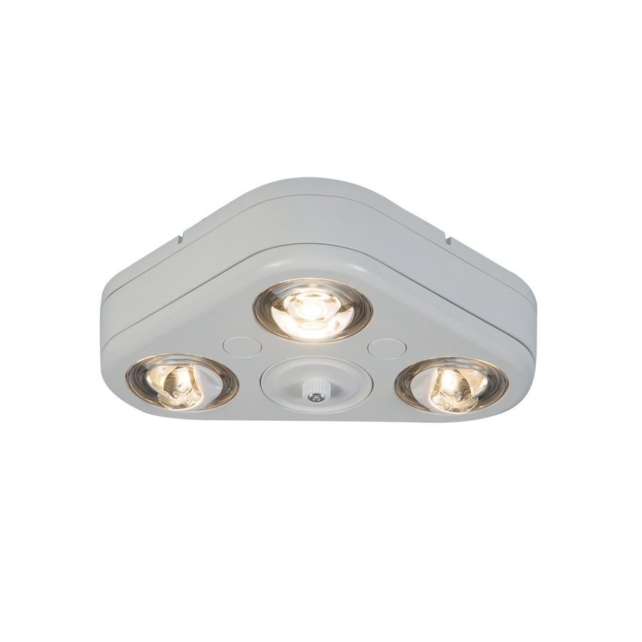 Widely Used Dusk To Dawn Outdoor Ceiling Lights Within Shop Dusk To Dawn Flood Lights At Lowes (View 20 of 20)