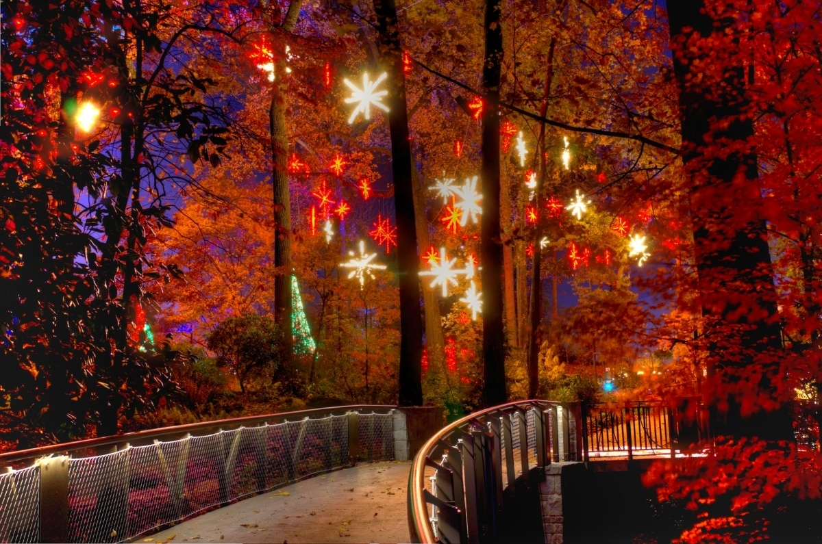 With A Southern Twist – Good Living In Today's South » Holiday Intended For Most Up To Date Botanical Garden Lights (View 15 of 20)