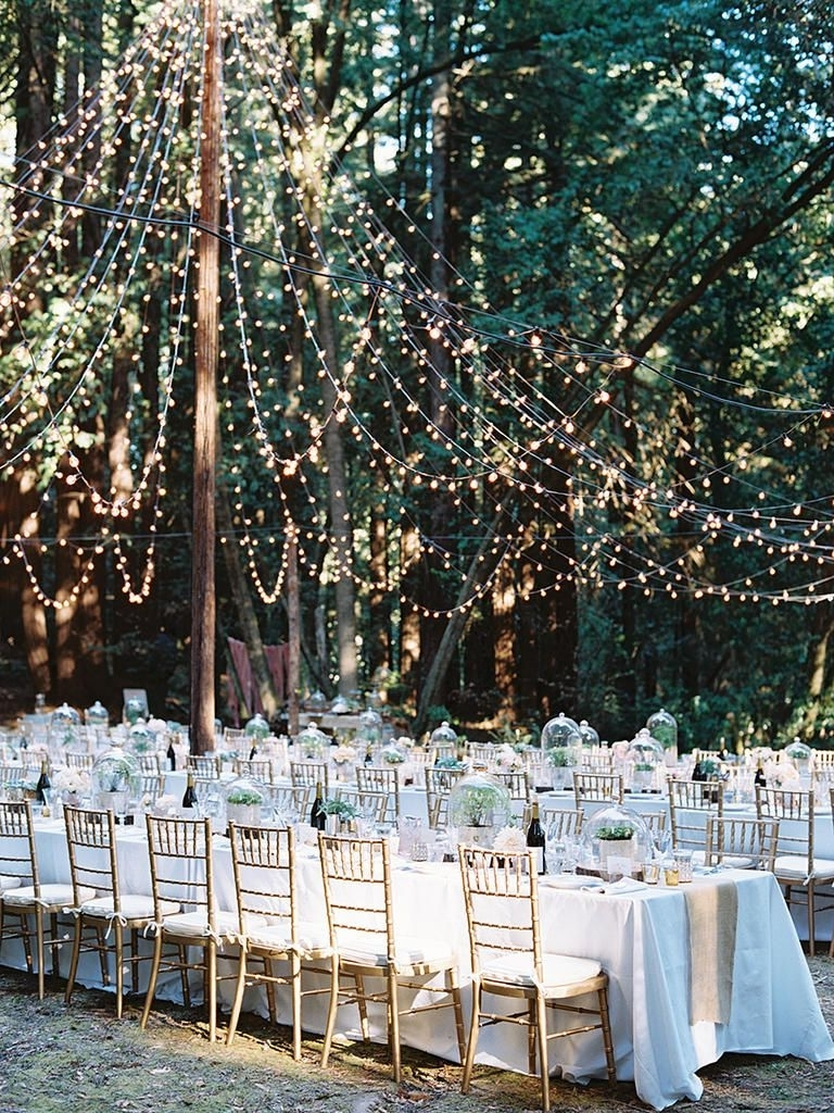 Woodland Regarding Hanging Lights For Outdoor Wedding (View 20 of 20)