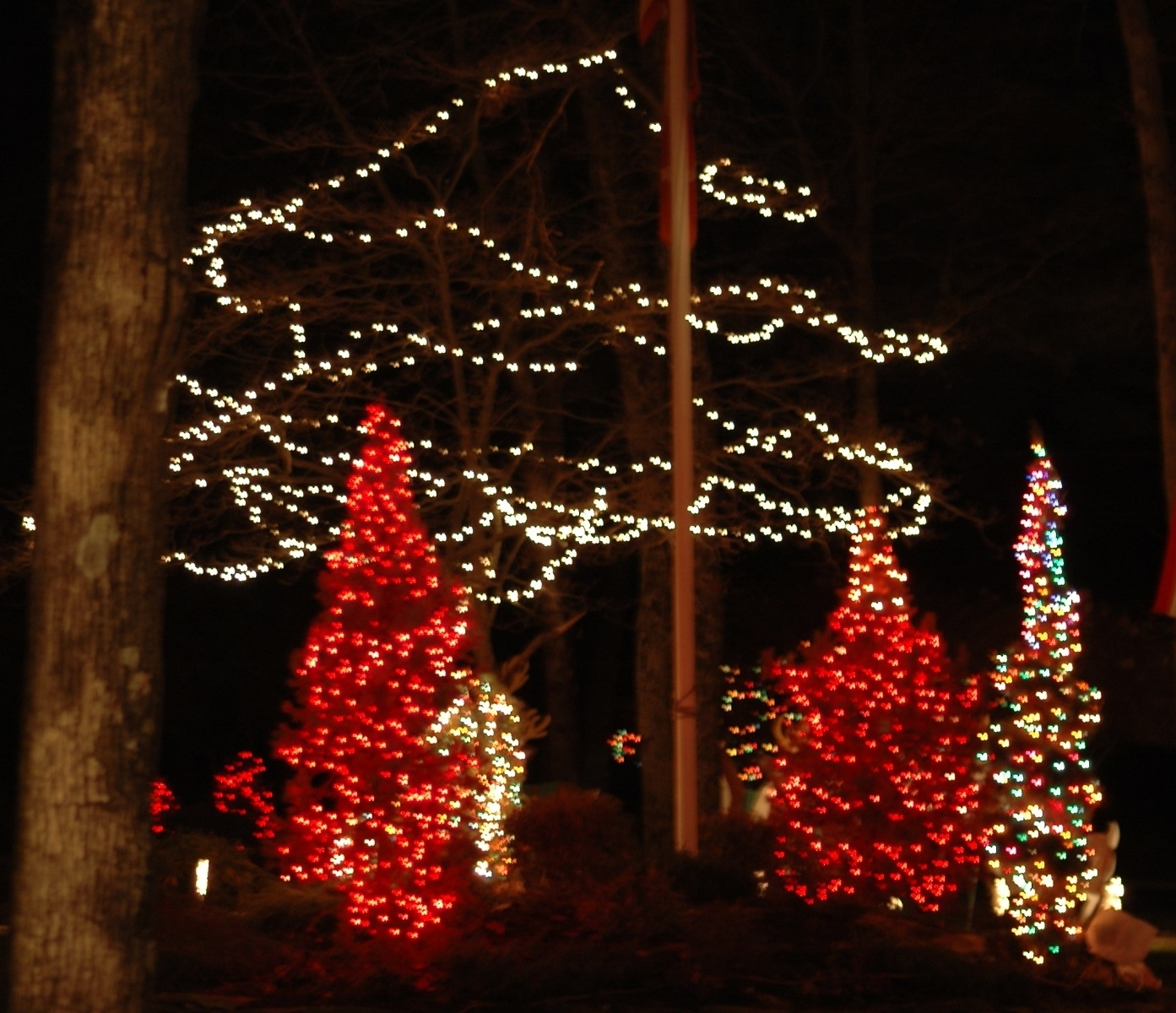 #83952 For Fashionable Outdoor Lanterns For Christmas (View 14 of 20)