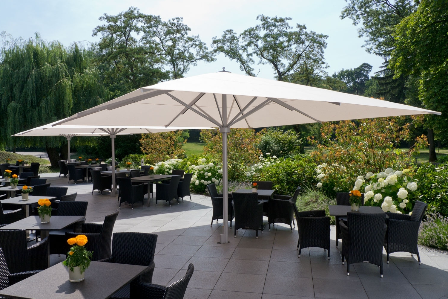 Caravita – Exclusive Commercial Patio Umbrellas Intended For Best And Newest European Patio Umbrellas (View 3 of 20)