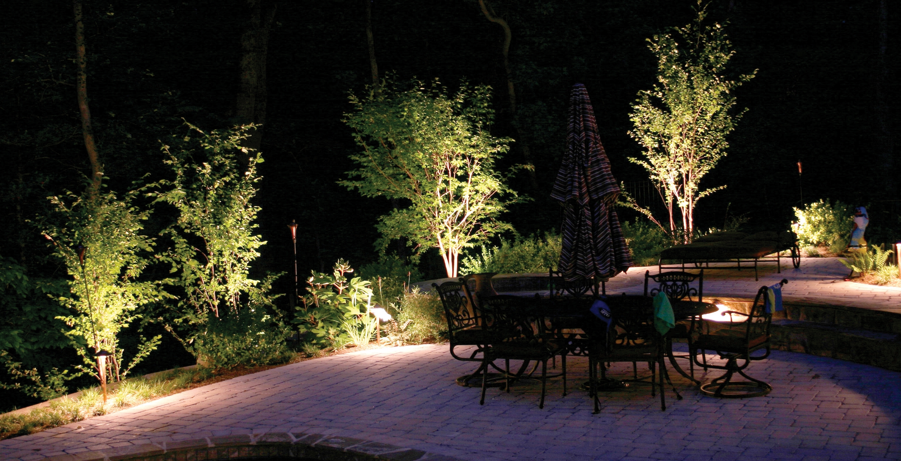 Charlotte Trees Light At Night With Outdoor Lighting – Home Lighting Inside Fashionable Outdoor Lanterns For Trees (View 3 of 20)