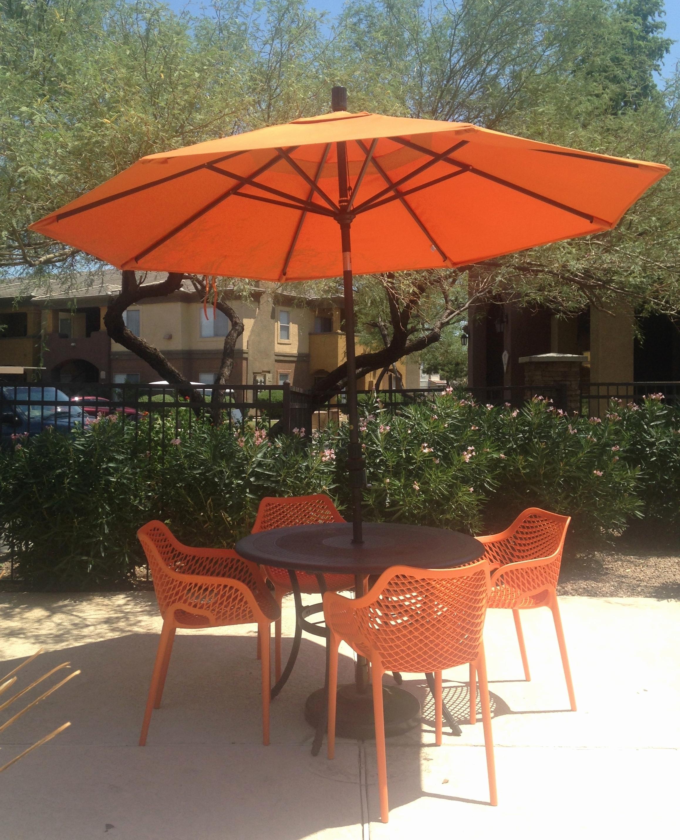 Elegant Vintage Patio Umbrella For Sale Graphics Home, Vintage Patio For Popular Vinyl Patio Umbrellas With Fringe (Gallery 2 of 20)